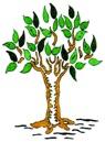 PJ Great Tree